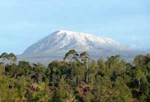 Trip to Kilimanjaro Cost