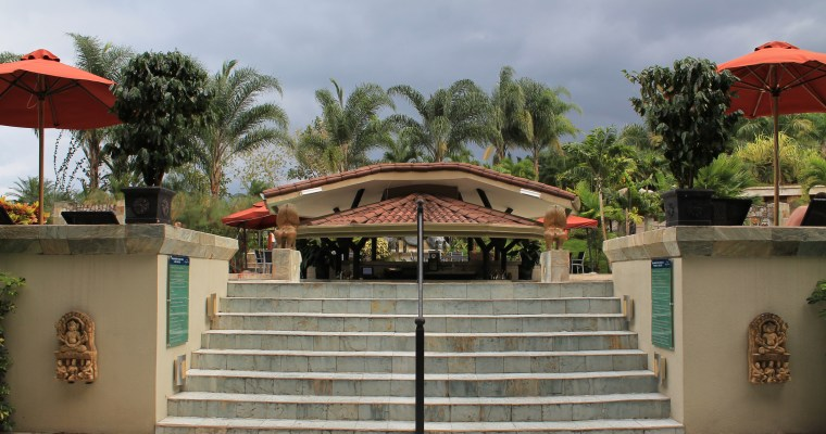 Arenal Hotel Recommendation: Luxury And Relaxation At Its Finest in La Fortuna/Arenal