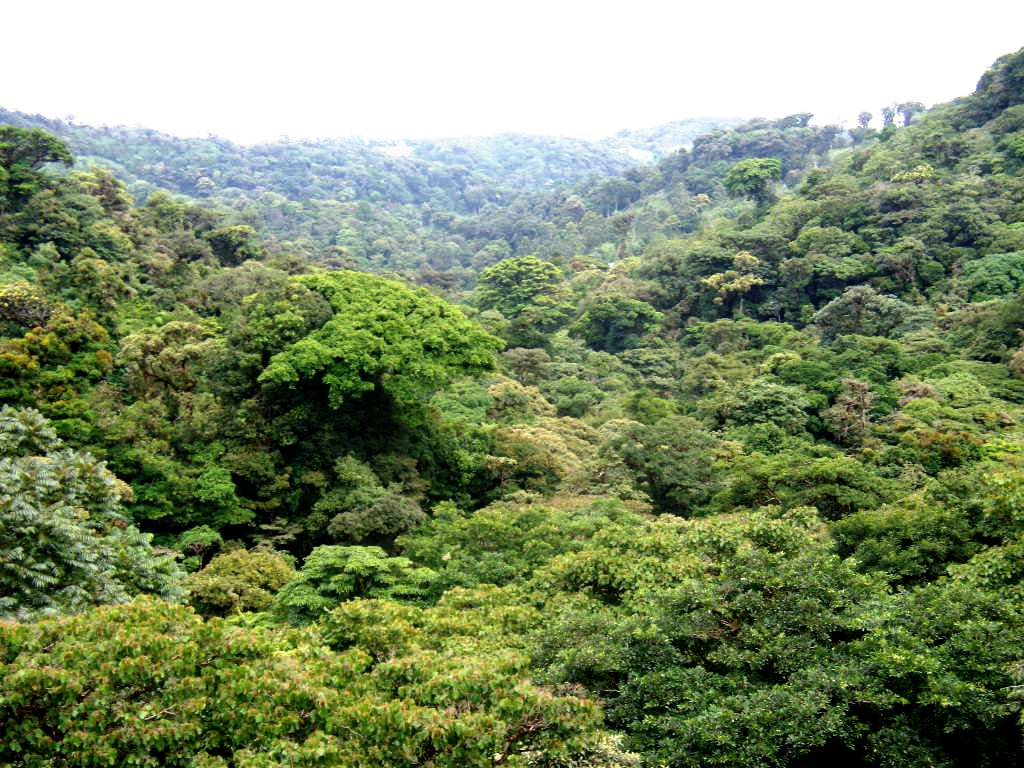 choosing a Costa Rica hotel
