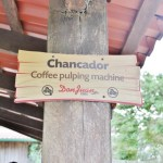 Monteverde coffee tour