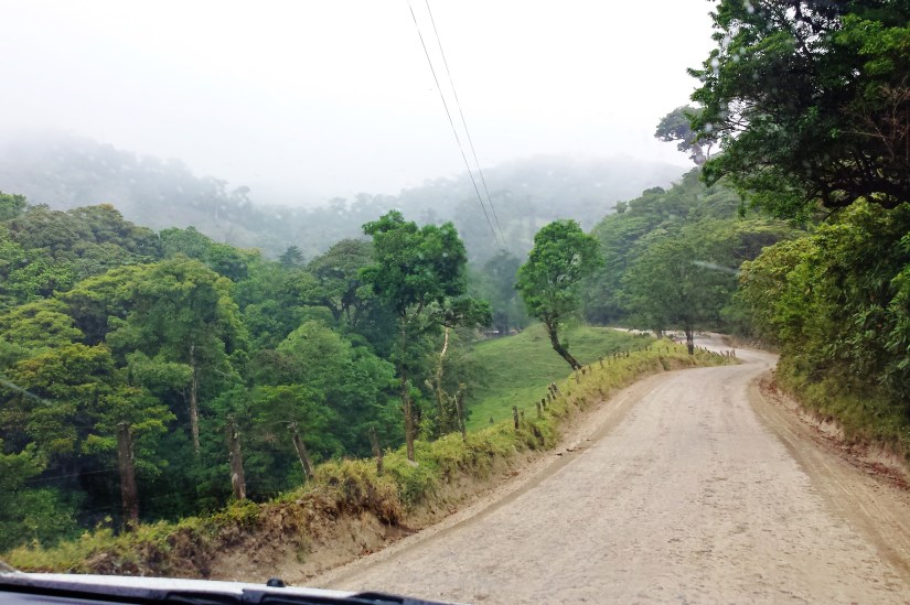 Road to the Selvatura Monteverde Park
