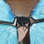 DIY Costa Rica morpho butterfly costume