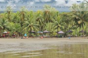 Photos of Playa Ventanas Costa Rica (Central Pacific) From Our Personal Collection