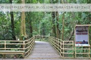 Costa Rica in June: Costs, Weather, Wildlife, Roads, Tourism Closures And More!