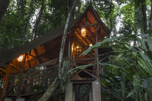 TreeHouse (6)