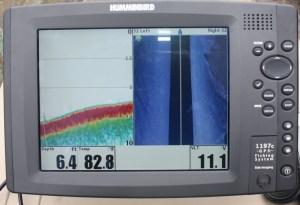 Ecosonda o sonar de barrido lateral, el instrumento que le permitió detectar al manatí