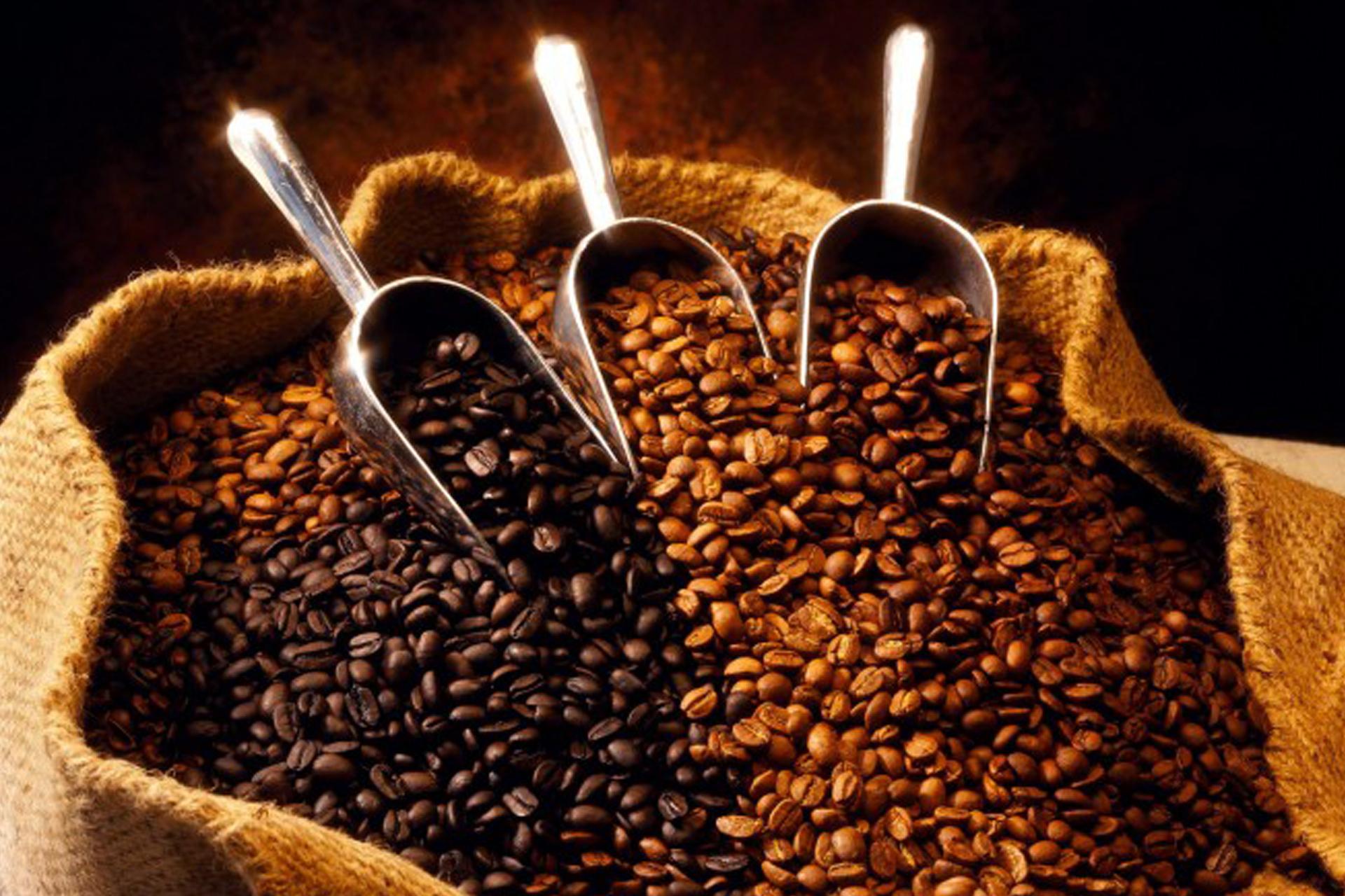 El particular sabor del café de Veracruz se debe a su cultivo en suelos volcánicos.