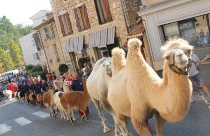 Fiestas de San Roque en Valbonne