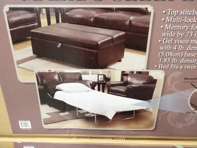 Twin Leather Sleeper Sofa