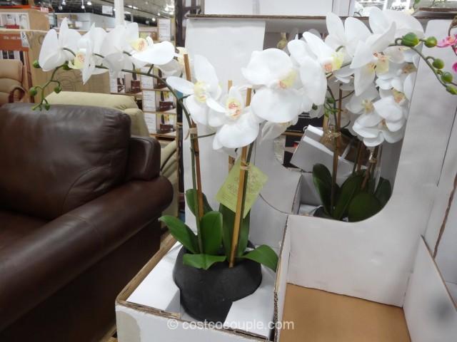 Beaumont Designs Decorative Orchid