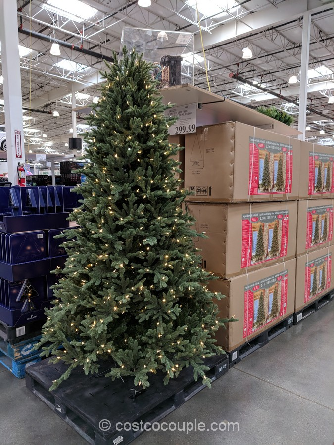 Kirkland Signature Christmas Tree Photo Album - Christmas Tree ...