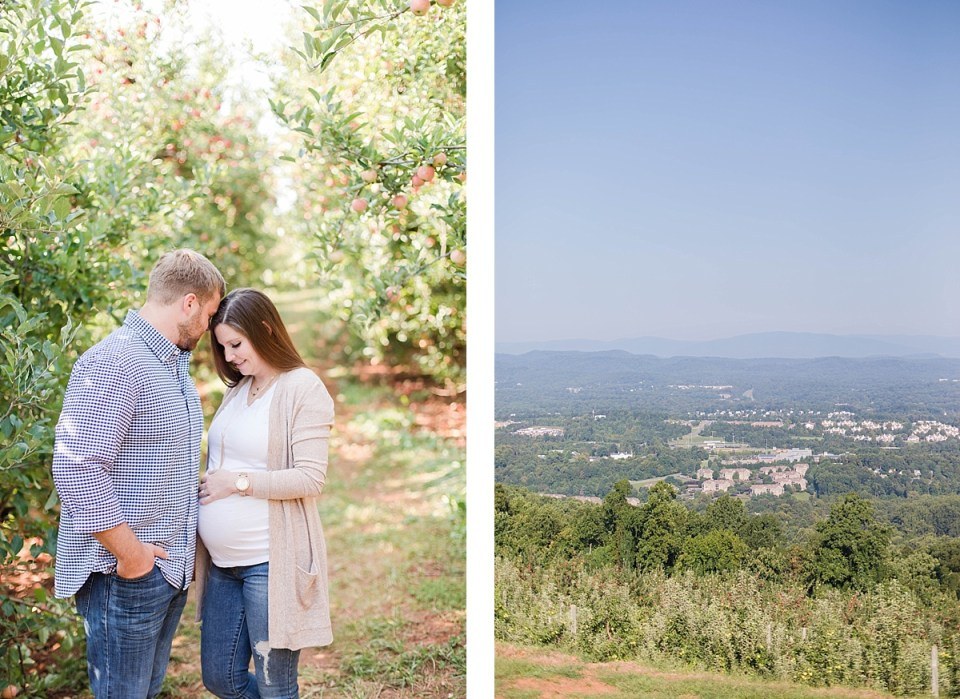 Charlottesville Orchard Maternity Session Carter Mountain_0916