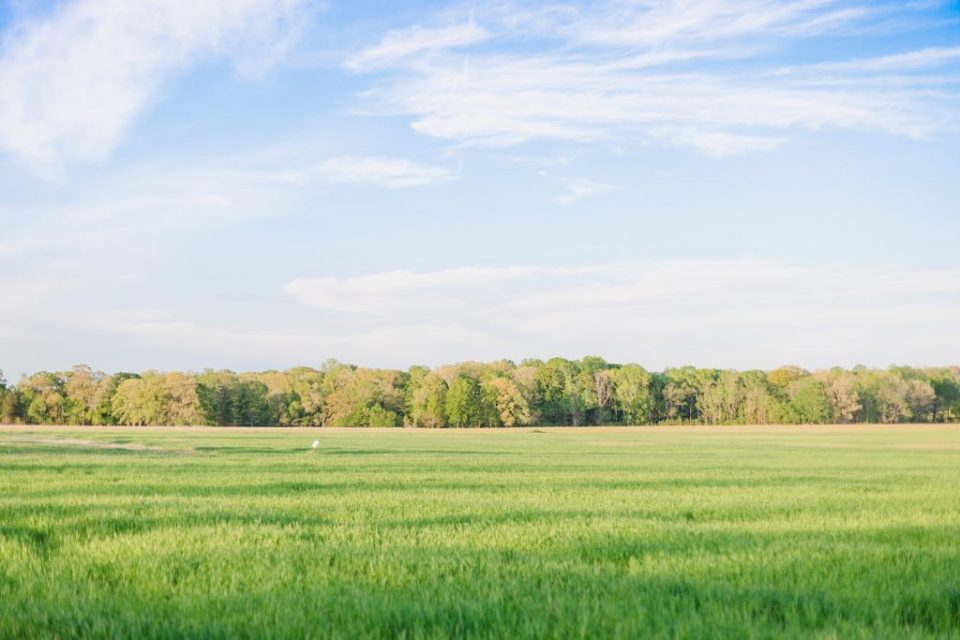 Engagement Session at Swann Farms in Owings Maryland