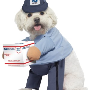 Dog USPS Mail Carrier Costume