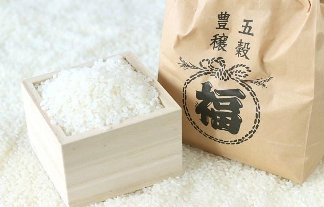 お米の保存容器人気ランキングベスト5☆精米後の賞味期限も知りたい