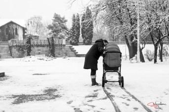 Prin Arad, in alb-negru