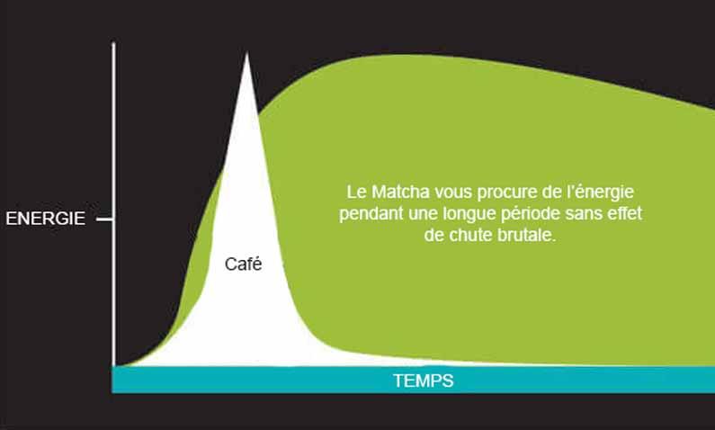 Pourquoi Remplacer le Café par du Thé Vert Matcha ? | Côté MATCHA