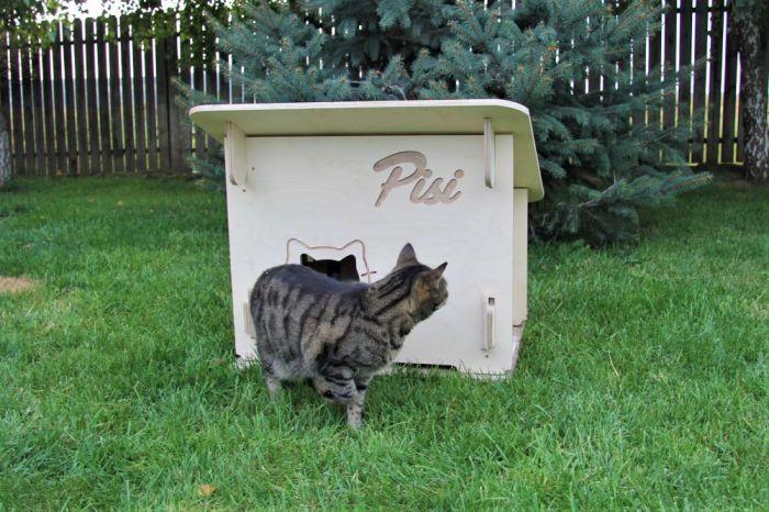 custi pentru pisici