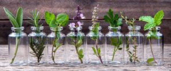 aromathérapie 3