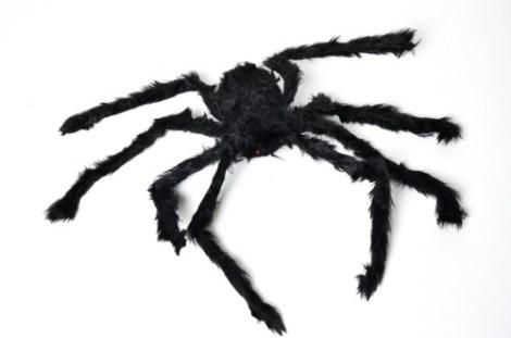 Araña Grande Peluda
