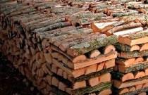 дрова из дуба