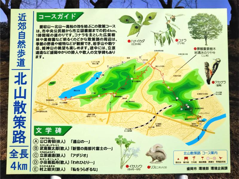 盛岡北山散策道から高松の池