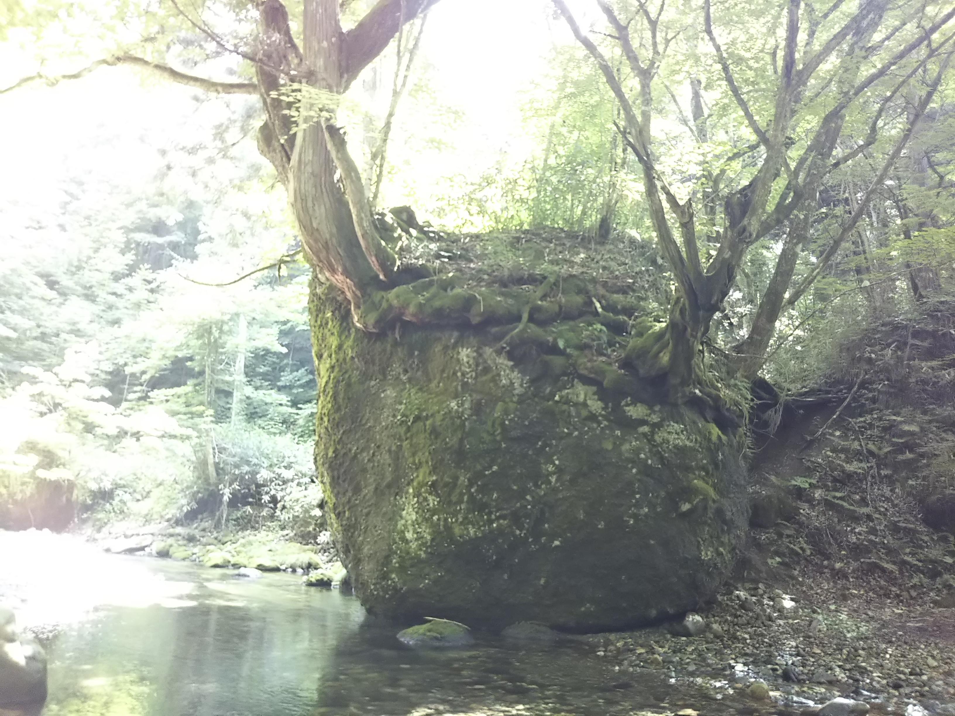 秋田県五城目町ネコバリ岩