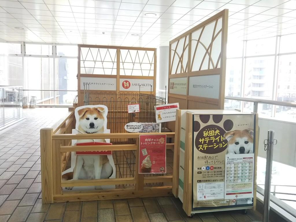 秋田駅秋田犬サテライトステーション