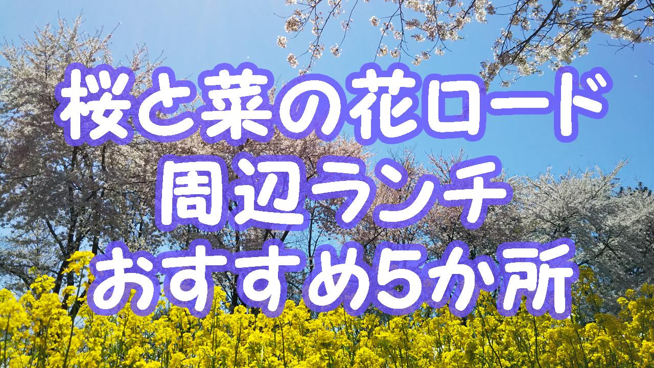 秋田大潟村桜と菜の花ロード周辺ランチ