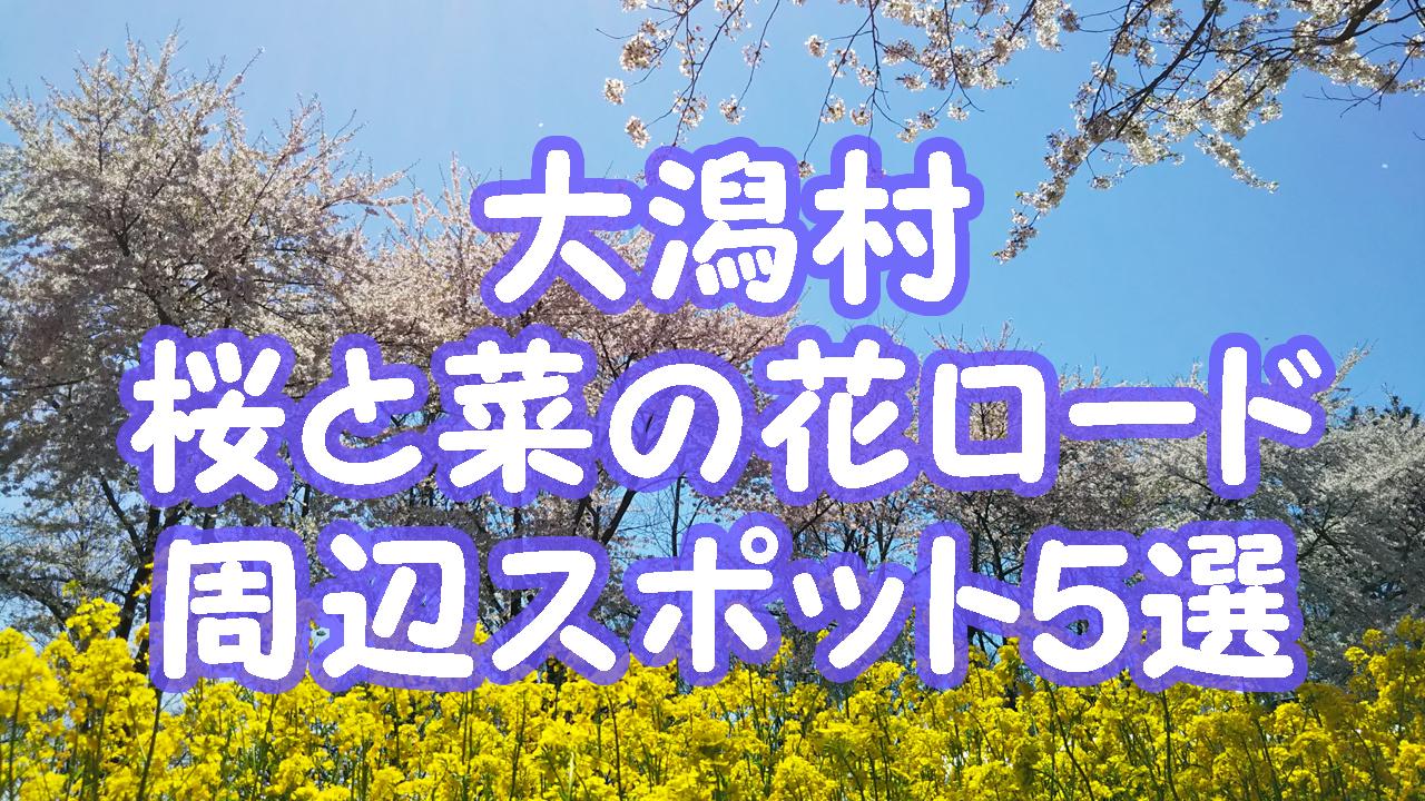 秋田大潟村桜と菜の花ロード周辺スポット