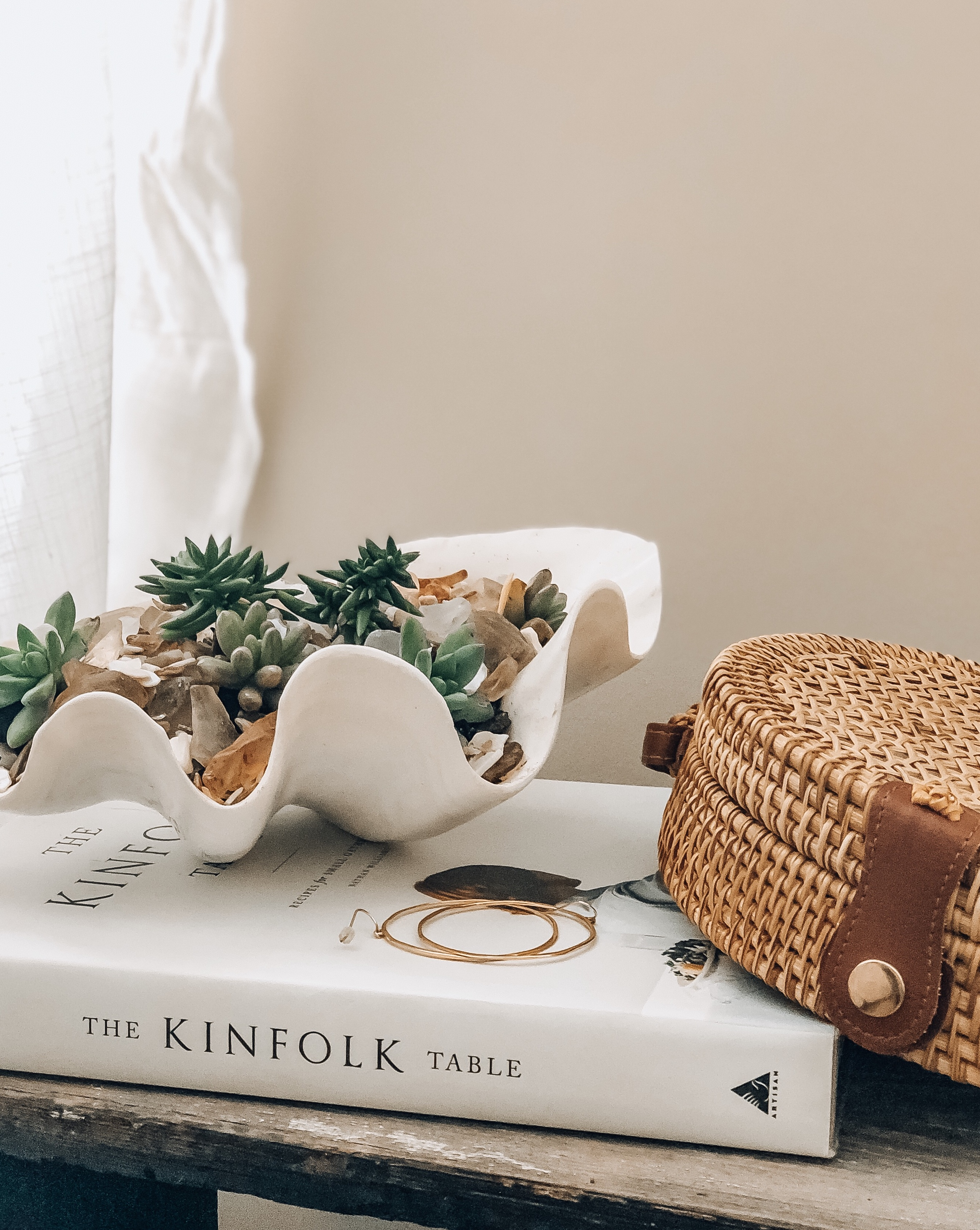 DIY SUCCULENTS IN A SHELL