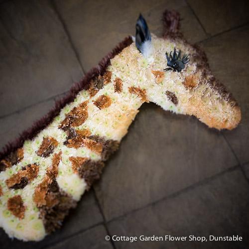 Specialty Design – Giraffe