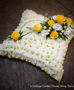 Based Cushion Yellow & White