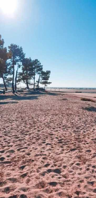 Arcachon blog lifestyle cotton candy