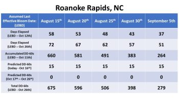 Bloom date chart for Roanoke Rapids