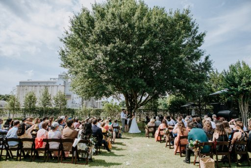 A couple getting married under a tree as their family and friends watch.
