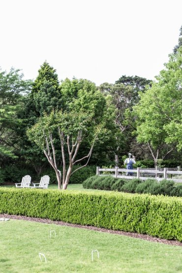 Cottonwood & Co - country style gardens at Bells at Killcare