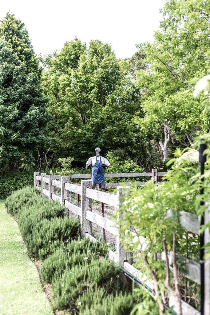 Cottonwood & Co - kitchen veggie garden at Bells At Killcare-26