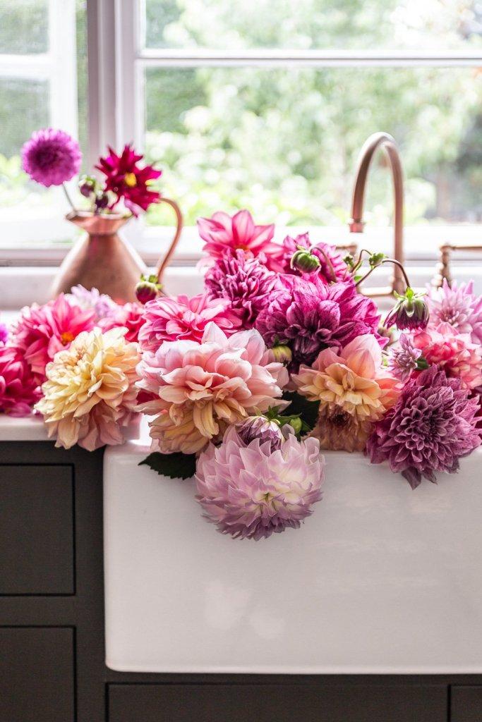 Dahlias in the sink - Cottage Kitchen