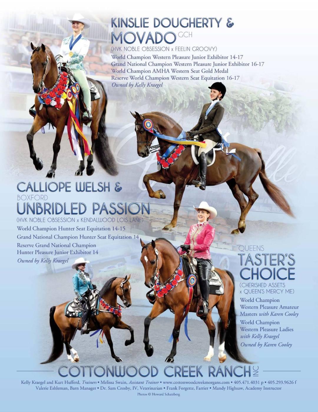 The Morgan Horse Dec 2016-2