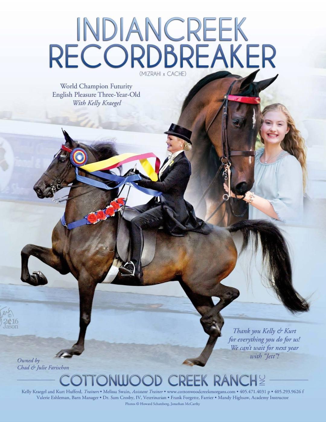 The Morgan Horse Dec 2016-6