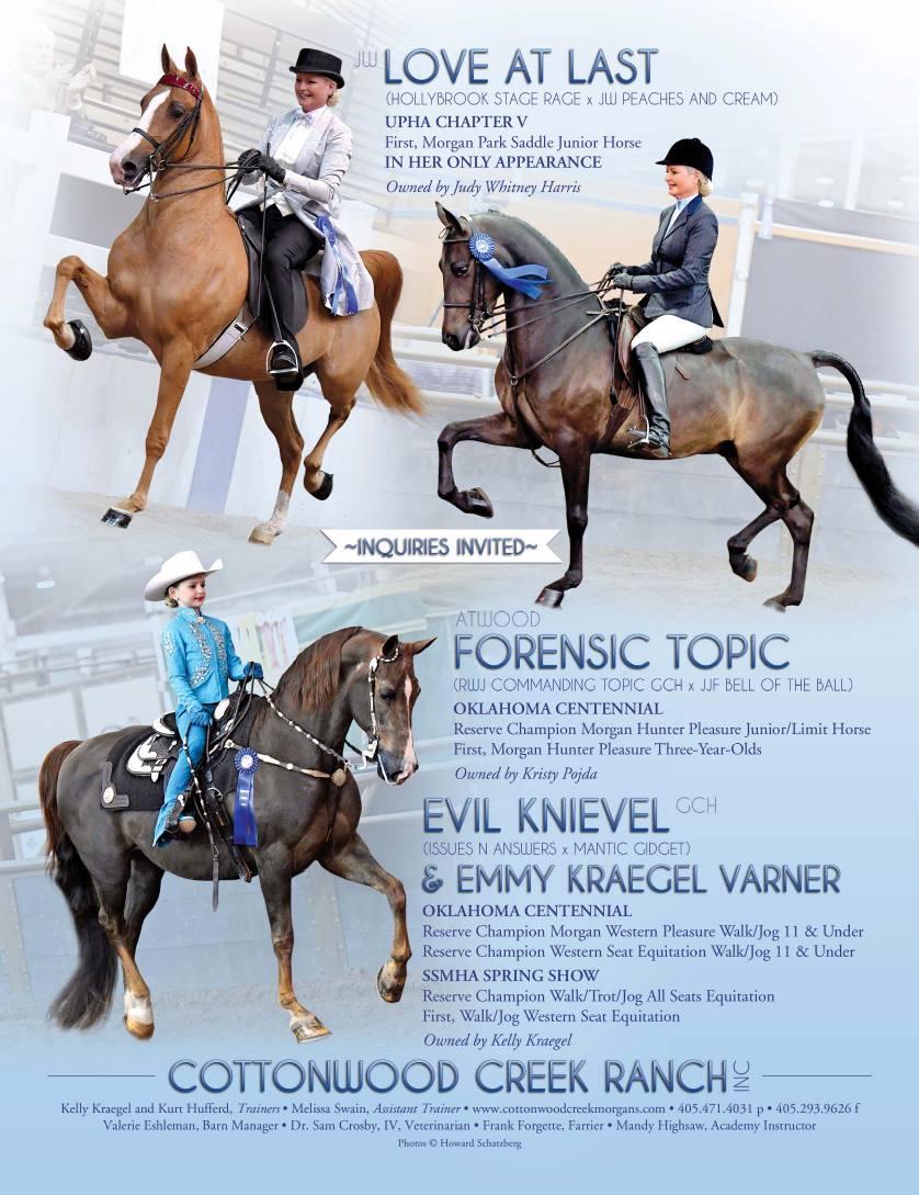 The Morgan Horse June 2017-6