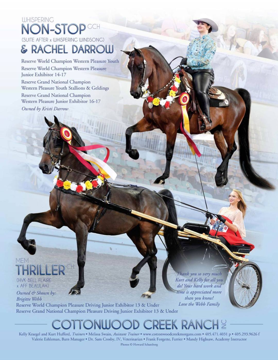 The Morgan Horse Dec 2016-1