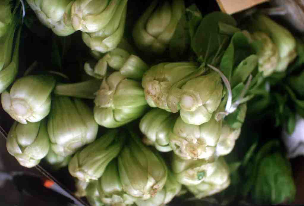 bok choi at a grocery store