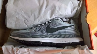 Nike Pegasus 34s in Box