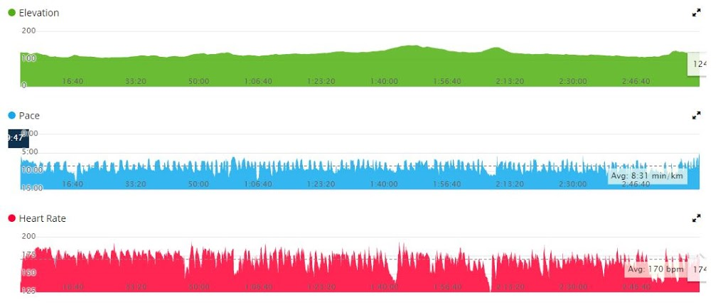 Birmingham Half Marathon Garmin Stats