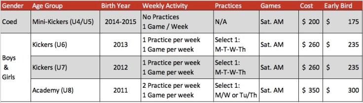 sp19 academy outline