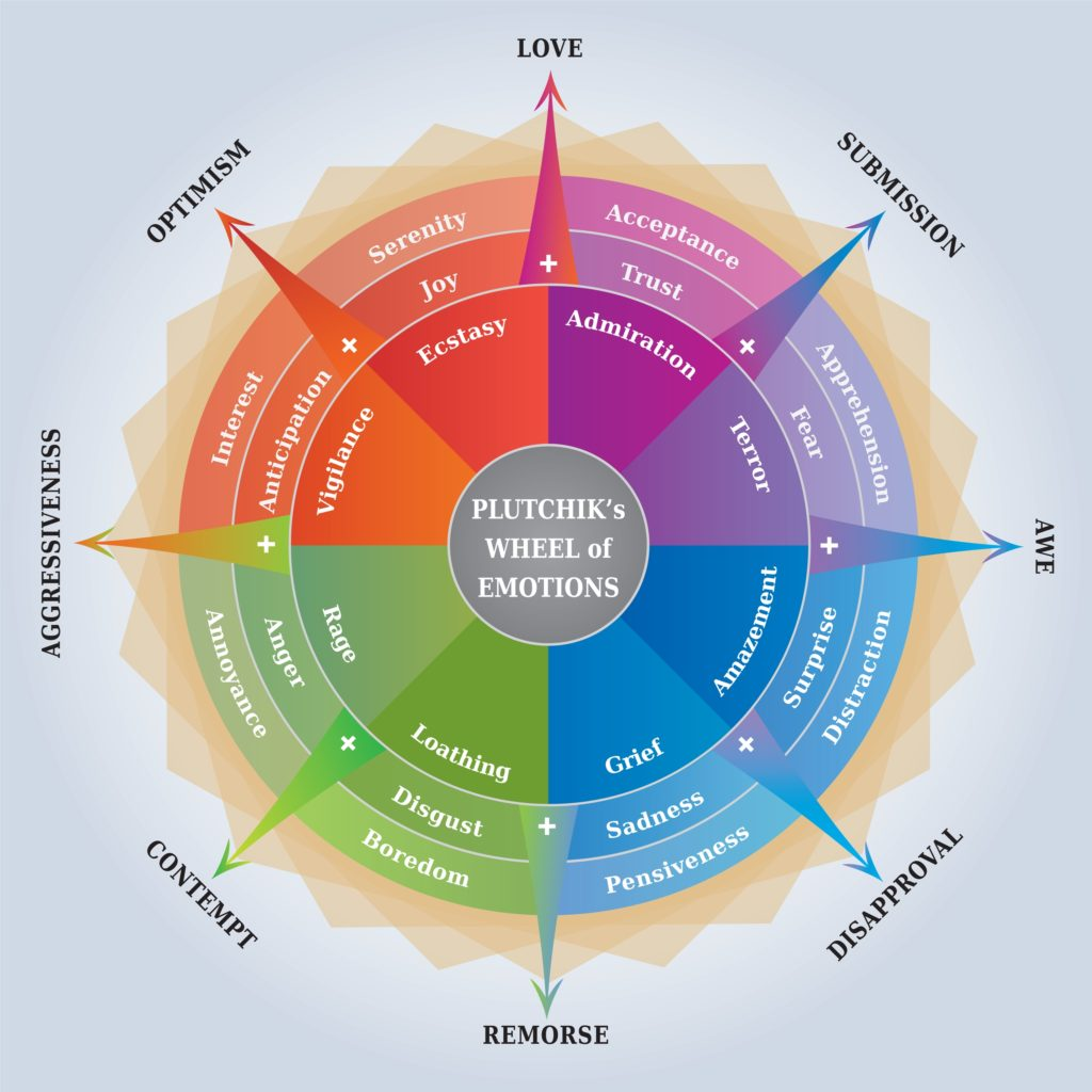 Your Emotional Description - Plutchick's Wheel of Emotions