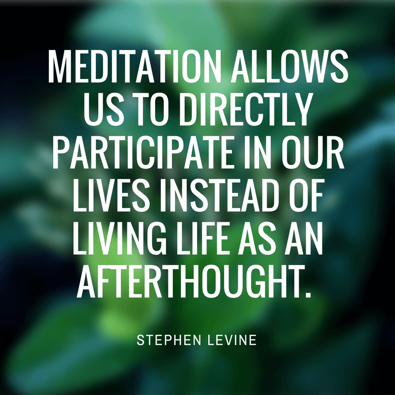 stephen levin meditation quote