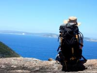 Plucking The Foreign Goose: Australia's Tax On Backpackers